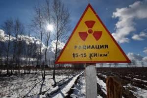 Брянцев пригласили на выставку «Чернобыль: 35 лет спустя»