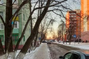 В Брянске на переулке Почтовом над тротуаром нависло аварийное дерево