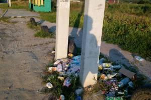 В Брянске на конечной маршрута № 240 устроили гадюшник