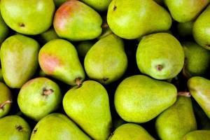 На брянской границе поймали контрабандиста с 2 тоннами груш