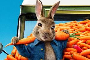 Брянцев позвали на бесплатный показ мультфильма «Кролик Питер-2»