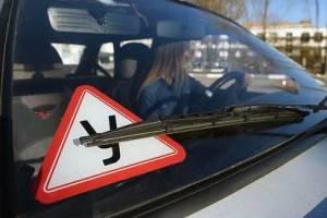 В Брянске запустили опрос о коррупции в автошколах
