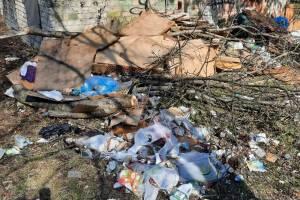 Центр Брянска превратился в зловонную свалку