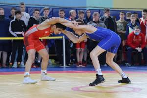 В Брянске прошел девятый турнир по вольной борьбе