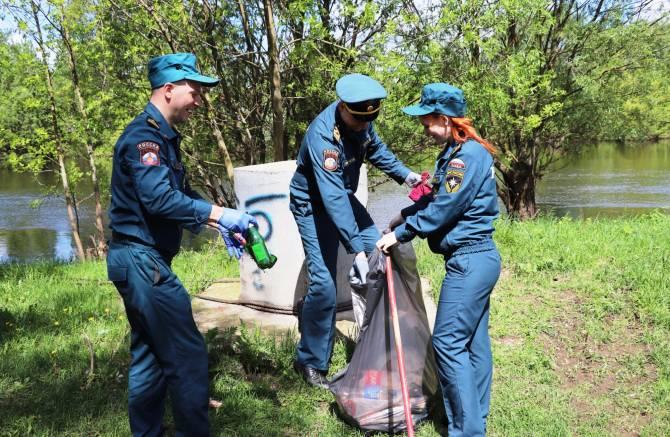 Брянские спасатели очистили берег Десны от мусора