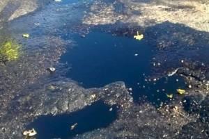 Почепские военные слили солярку возле школы