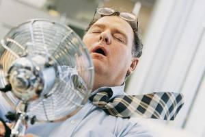Брянской области пообещали жаркий понедельник