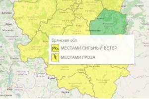 На Брянщине из-за грозы и сильного ветра объявили «жёлтый» уровень опасности
