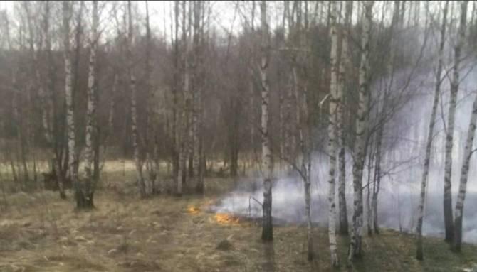 В Жуковском районе несколько часов тушили горящую траву