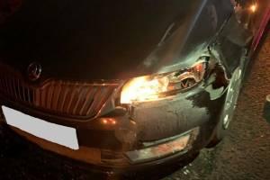 Под Карачевом водитель Skoda насмерть сбил 81-летнюю пенсионерку