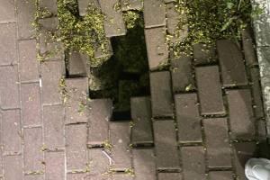 В Брянске провалилась плитка у отеля «Башня»