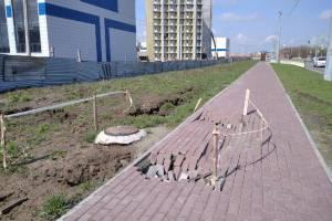 В Брянске разрушенный тротуар у Дворца единоборств восстановит подрядчик