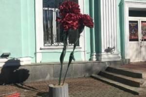 У входа в администрацию Володарки поставили «могильные» цветы