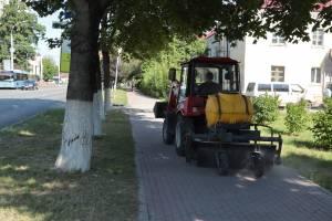 В Брянске покосили траву на 50 гектарах и вывезли с дорог 10 тонн песка