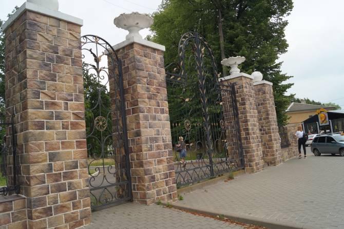 Старинный парк в Клинцах останется без деревьев?