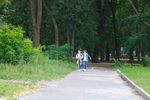 В Пушкинский парк Бежицы могут вернуть детскую площадку