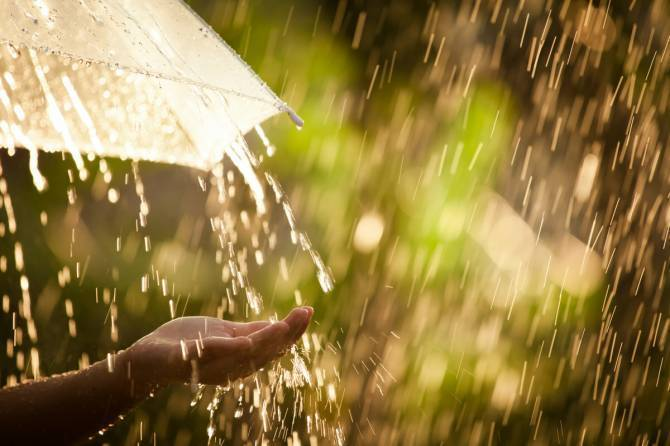 В пятницу брянцам пообещали дождь и мокрый снег