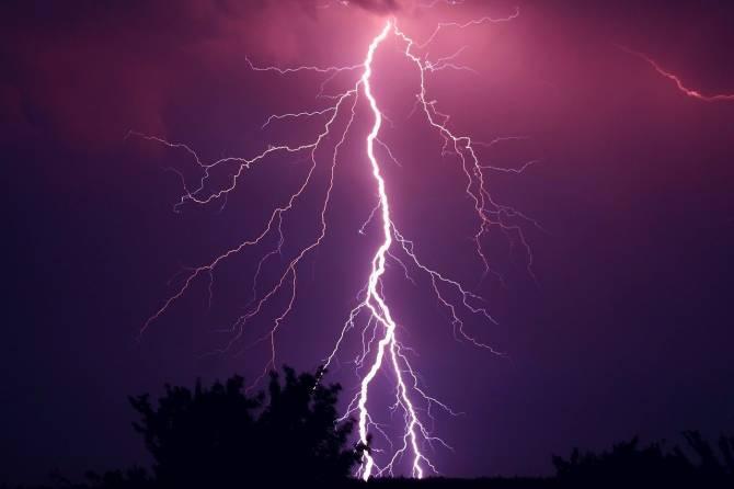 В пятницу брянцам пообещали сильный ветер и дождь с грозой