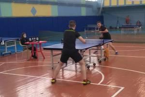 Брянские мастера маленькой ракетки определили чемпиона области по настольному теннису
