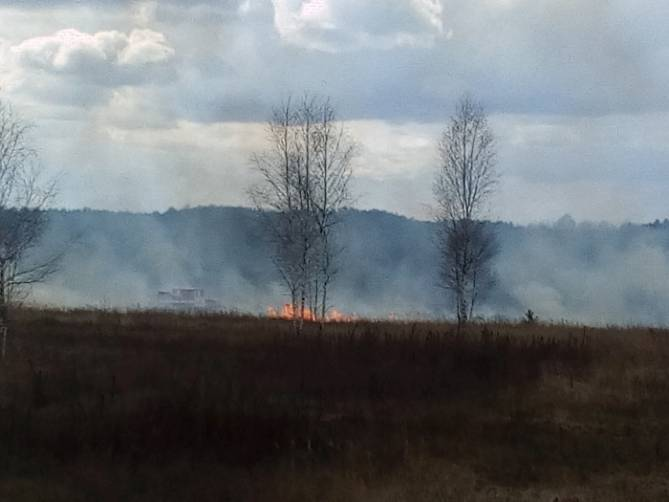 Брянские пожарные за сутки дважды тушили горящую траву