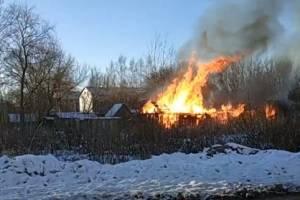 В Белых Берегах сняли на видео крупный пожар