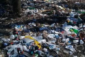 В Сельцо загадили природоохранную зону на улице Кирова