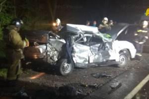 В жутком ДТП под Брянском погиб 42-летний водитель