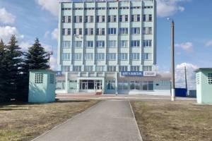 Территорию аэропорта «Брянск» привели в порядок