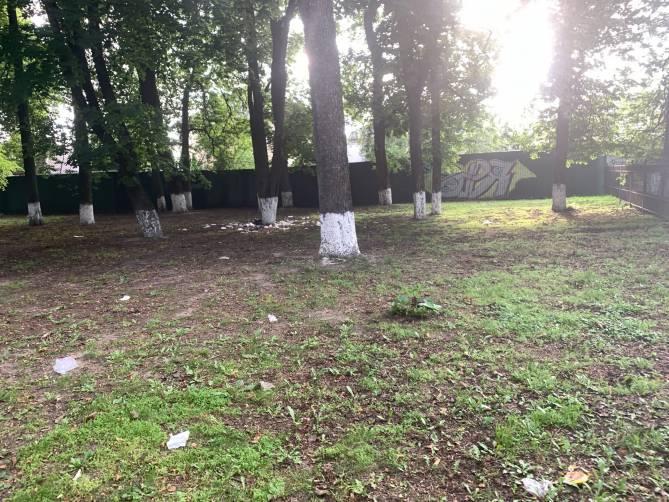 В Брянске сквер на улице Пересвета превратился в свалку из-за бестарного сбора отходов