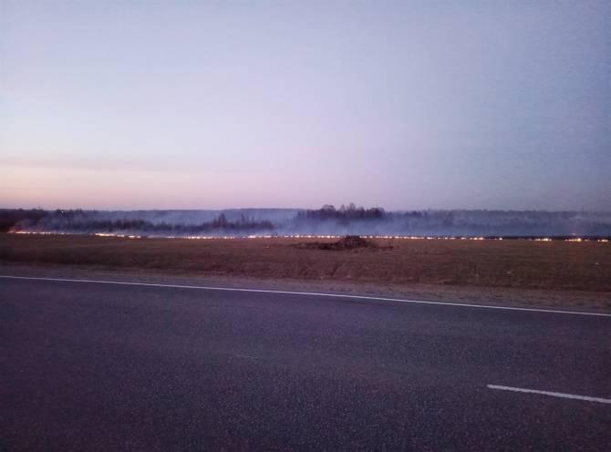 Пожар в поле рядом с Любохной попал на видео