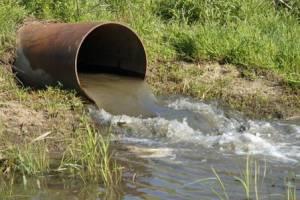 Предприятие «Почеп-Молоко» незаконно сбрасывало сточные воды