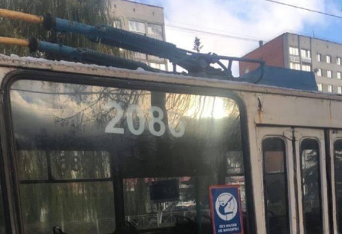 В Брянске могут засудить автора жалобы на водителя троллейбуса