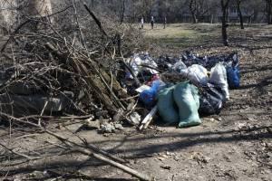 В Брянске двор на проспекте Ленина превратили в помойку
