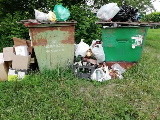 Жители брянского села пожаловались на мусорный апокалипсис