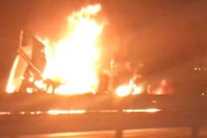 На платной трассе Брянск-Москва после страшного ДТП сгорела фура