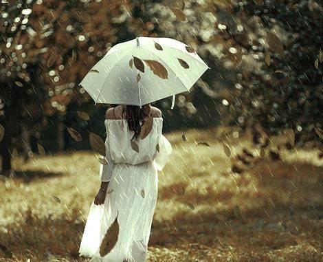 В Брянске 5 ноября ожидается аномально теплая погода