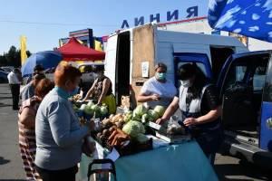 В Брянске открылась самая большая ярмарка выходного дня