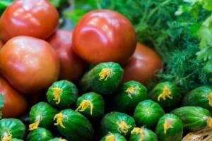 На брянских прилавках на 9,3% подорожали овощи