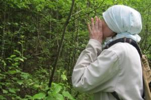 Под Брянском в лесу нашли заблудившуюся в лесу 80-летнюю пенсионерку
