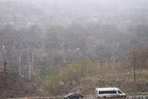 На Брянск 24 апреля обрушилась метель