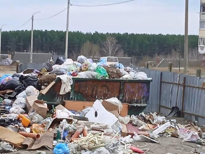 В Брянске улица Почтовая превратилась в зловонную свалку
